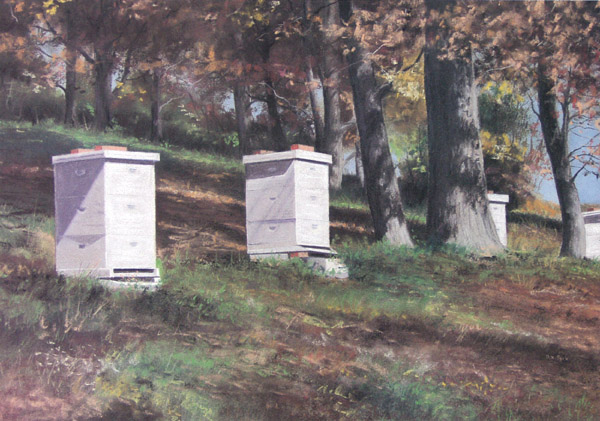 Autumn at the Beehives by Dennis Park