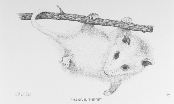 Hang in There by Martin May