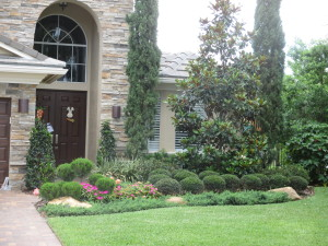 green, simple, low maintenance landscape design for front yard