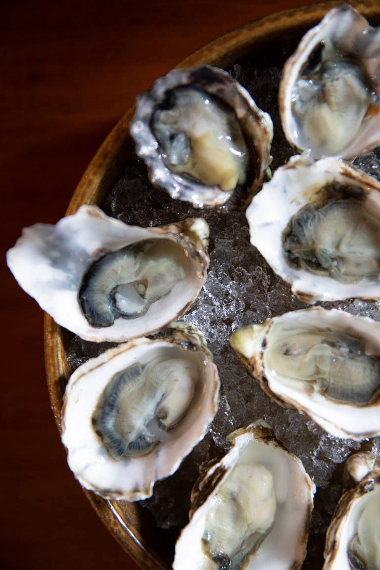 bicyclette-bistro-oysters