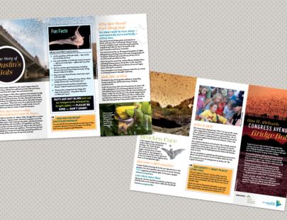 Bat Conservation International - Congress Bridge Brochure 2016
