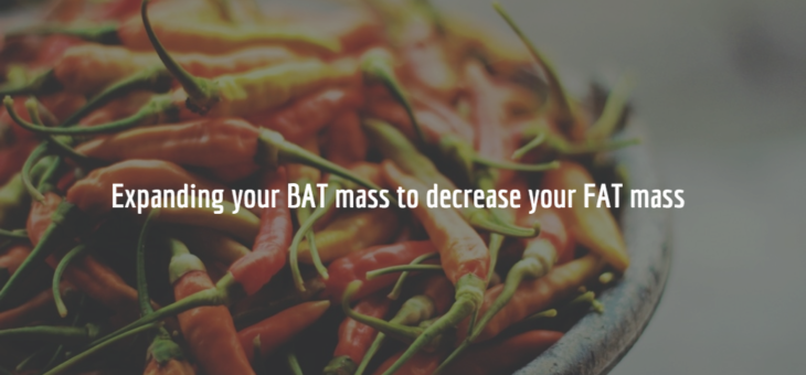 Expand Your BAT Mass to Decrease Your Fat Mass
