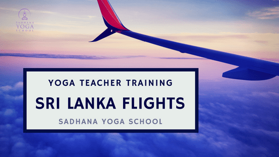 yoga teacher training flights to sri lanka sadhana yoga school