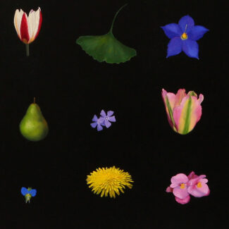 Oil painting on canvas of Toronto flowers by Canadian artist Joanna Strong, entitled: Sudoku of Toronto Flowers