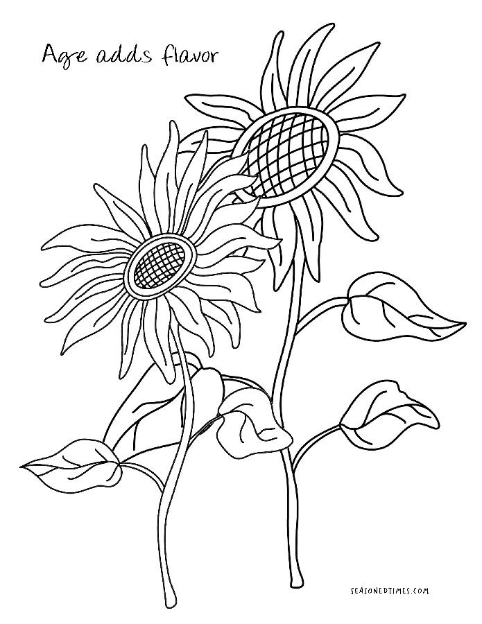 CPSunflowers1020
