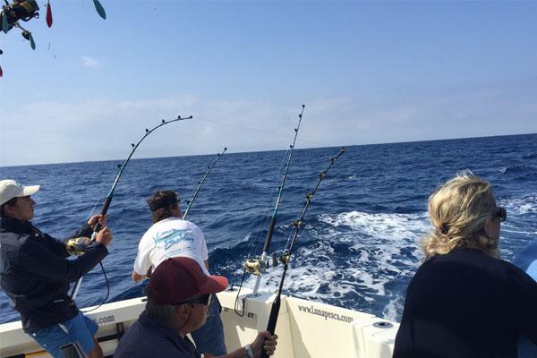 Fishing Trip Pack 02 Puerto Banus, Marbella
