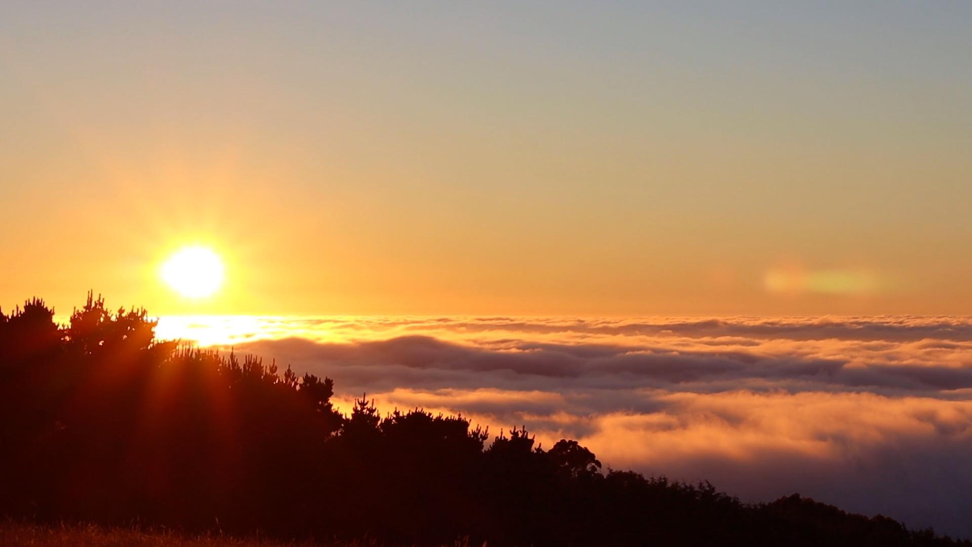Studio Garden View of Cloudy Morning