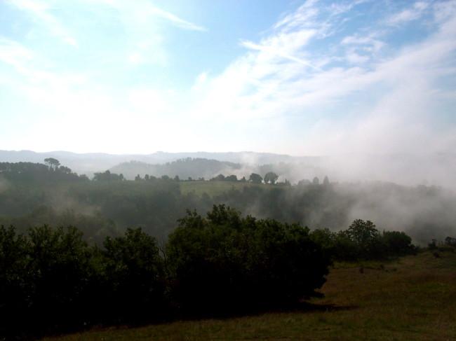 Tuscan fog