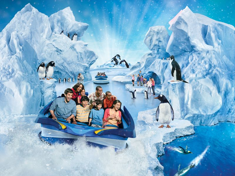 vacation-special-seaworld-package-antarctica-penguins