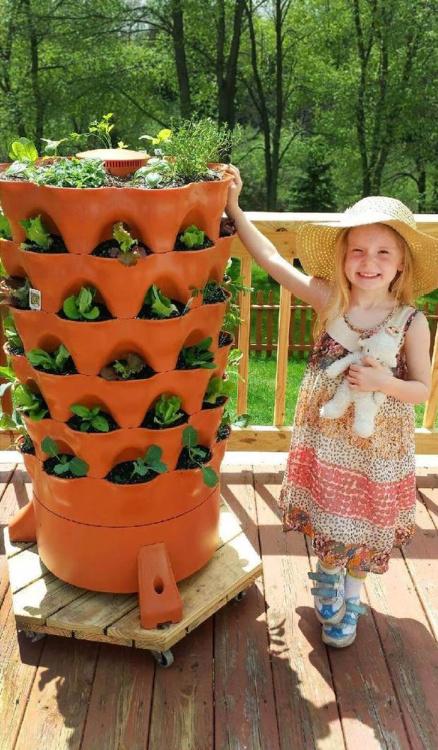 vertical garden planter