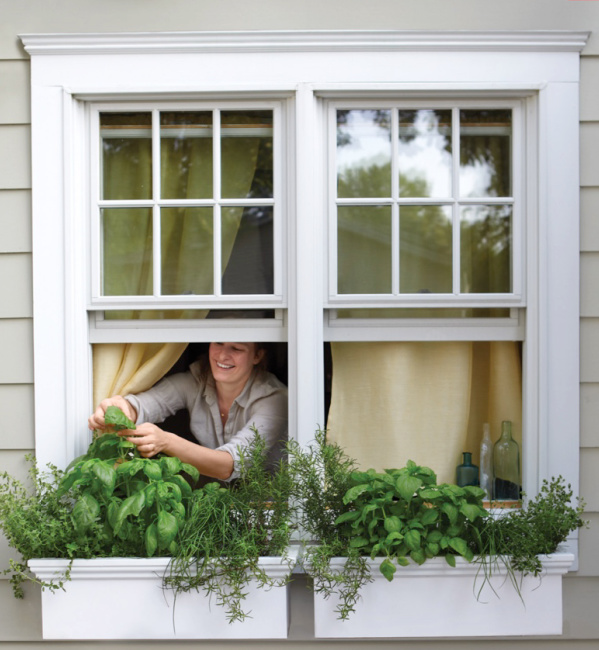 window boxes for gardening