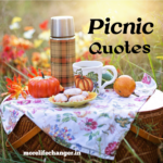 26 Amazing picnic quotes
