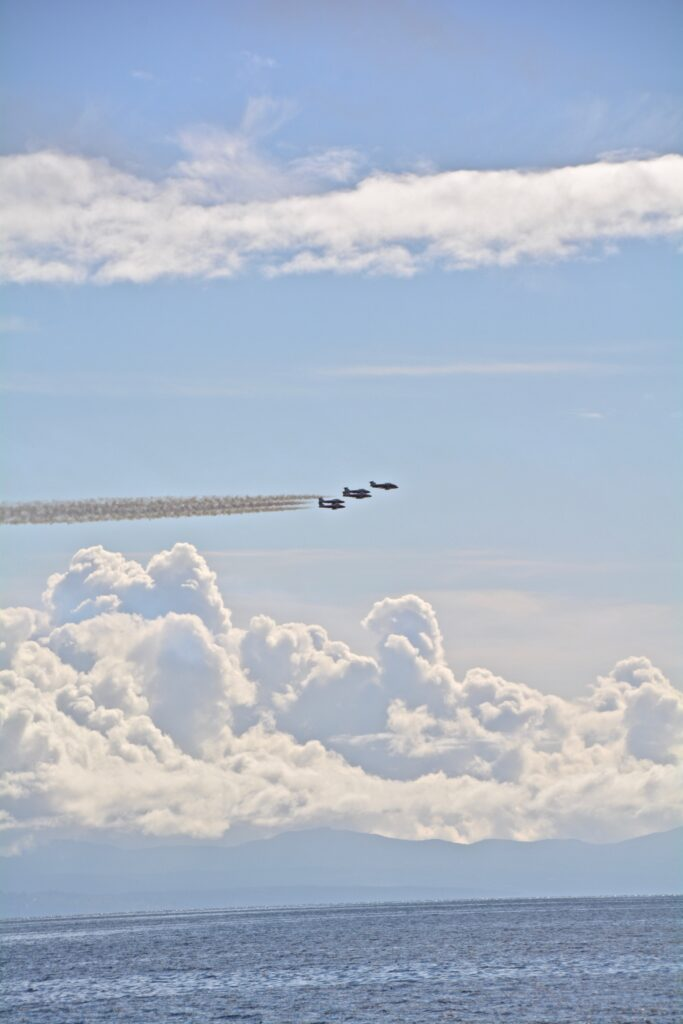 Snowbirds zooming by