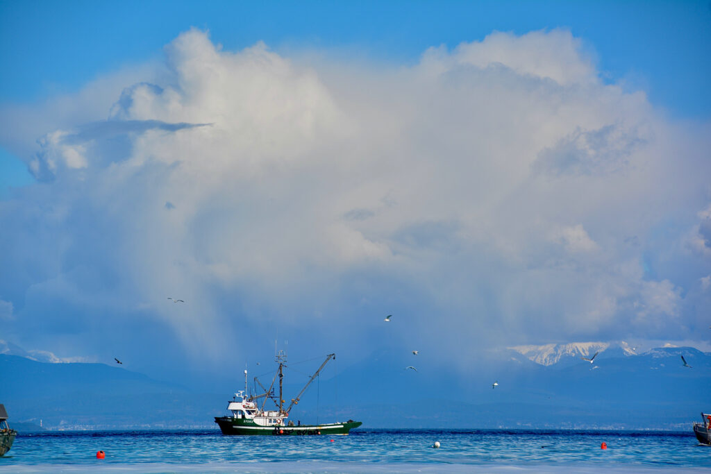 Fluffy clouds and the fishers