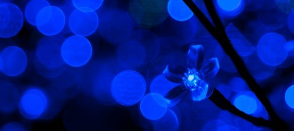 Royal Blue LED Lights
