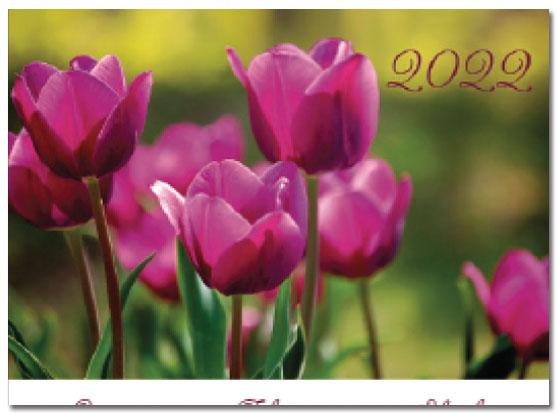 Mini Calendar Cards