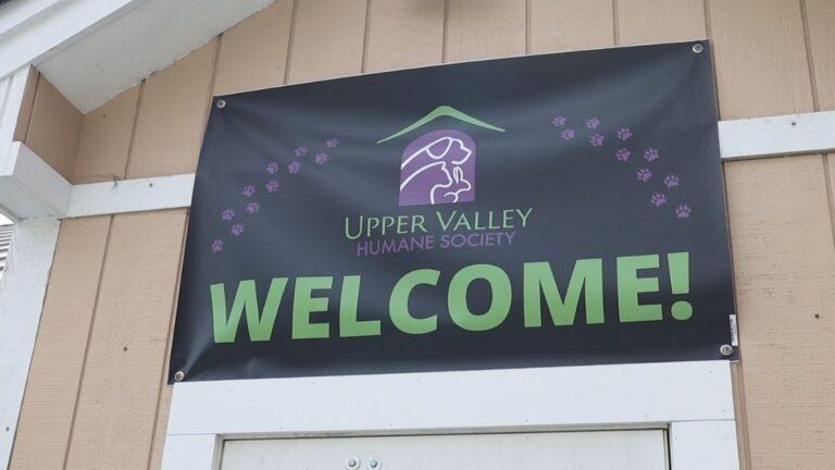 UVHS Seeks Strategic Planning Consultant