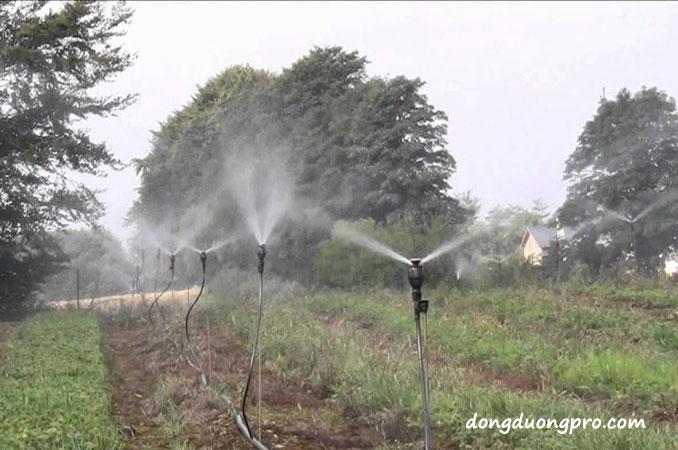 Chi phí lắp đặt hệ thống tưới phun mưa