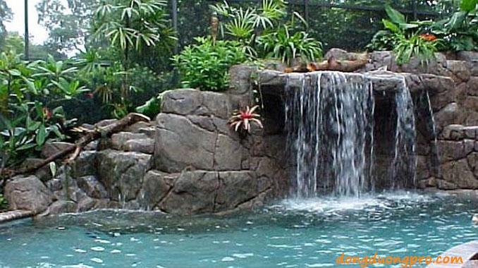 Những lưu ý khi thiết kế hồ bơi thác nước