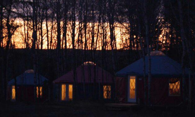 5 raisons de séjourner en couple ou en famille en yourte au Domaine L'Orée des Bois