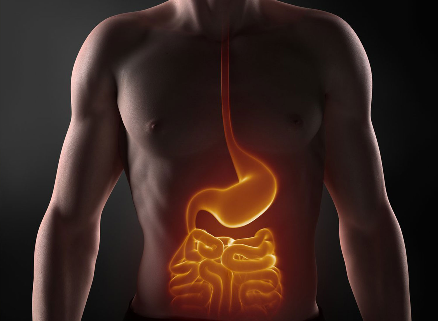 electric digestion
