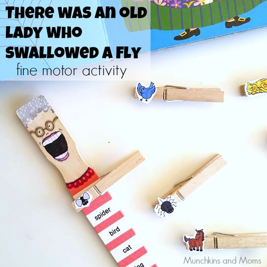 There was an old lady who swallowed a fly- Super cute activity!