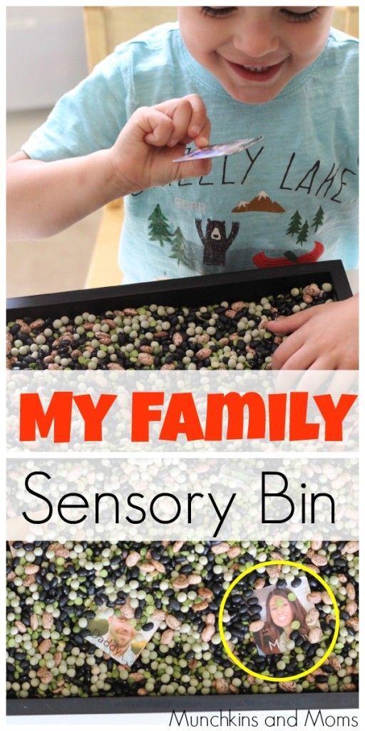 """""""My Family"""" themed sensory bin. A great addition to the preschool theme """"All About Me!"""""""