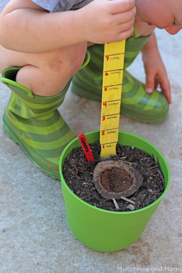 Make a measuring stick from paint stir-sticks for kids to measure plant growth! Brilliant idea!
