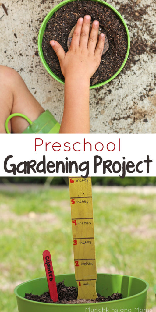 Preschool Gardening Project- a great way to learn with kids!