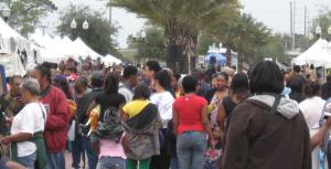 Zora20111