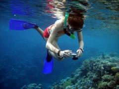 key west florida snorkeling trip
