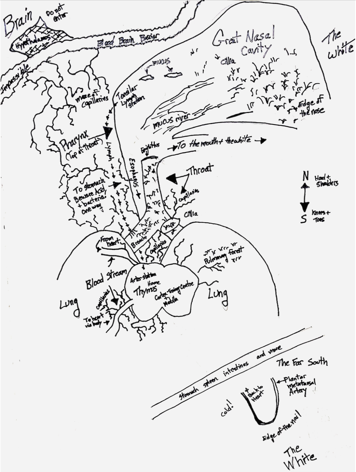 A hand drawn map of the inside of Flip