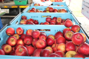 Fresh4U apples at the Marlborough Farmers Market