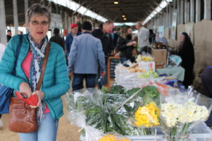 Marlborough Farmers Market in the A&P park sheep pavillion