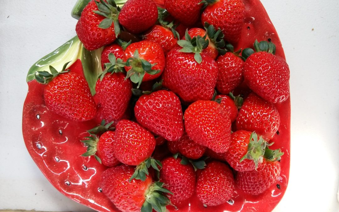 Hedgerow Strawberries at the Marlborough Farmers Market