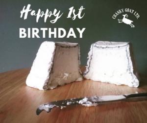 Happy 1st birthday cranky goat