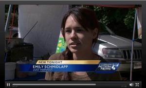 Emily Schmidlapp on WTAE TV news