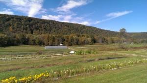 Edible Earth Farms in Tionesta, PA