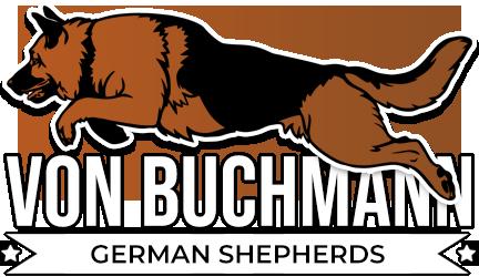Von Buchmann