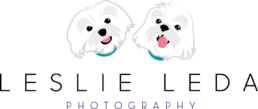 Leslie Leda Photography LLC logo