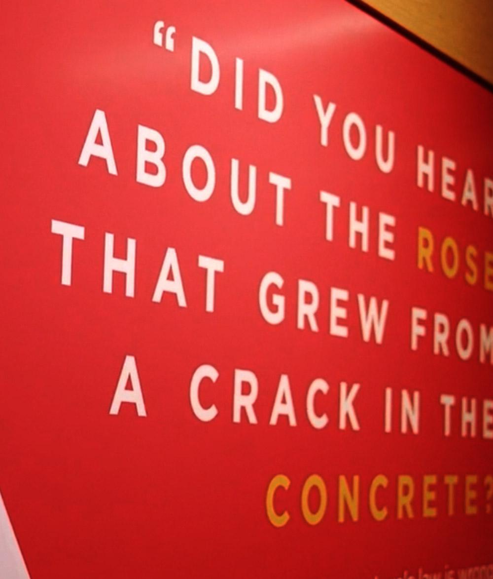 Zendaya x Google x Roses in Concrete