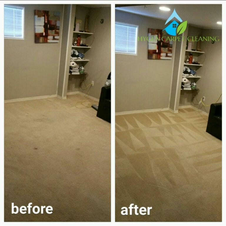 Hygea carpet cleaning destin florida