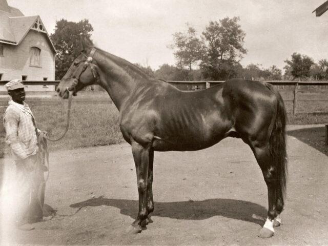 Belle Meade Plantation and History of Nashville Horse Breeding