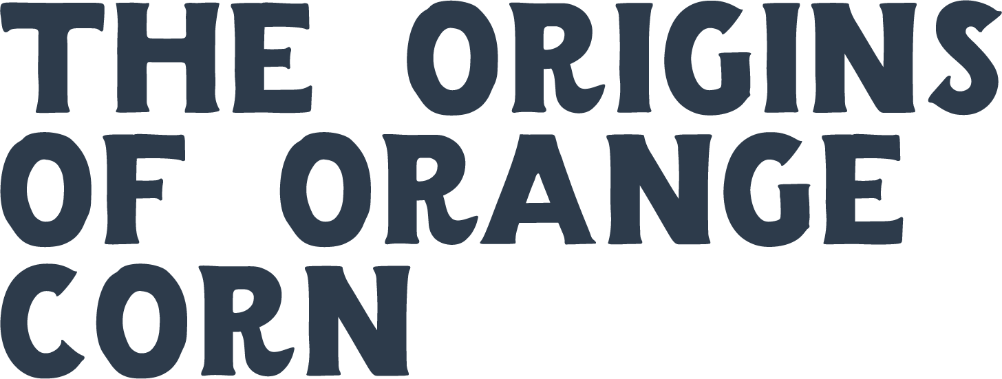 the origins of orange corn