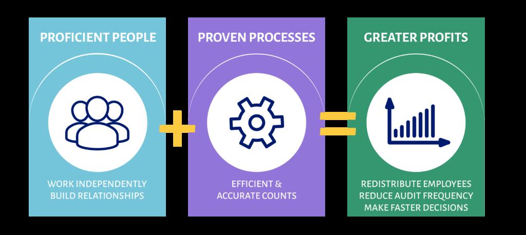 audit process graphic