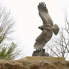 cropped-Eagleview-Realestate-Eagle.jpg