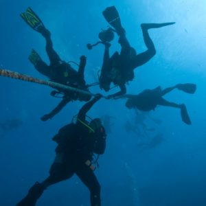 Divers for UWV020