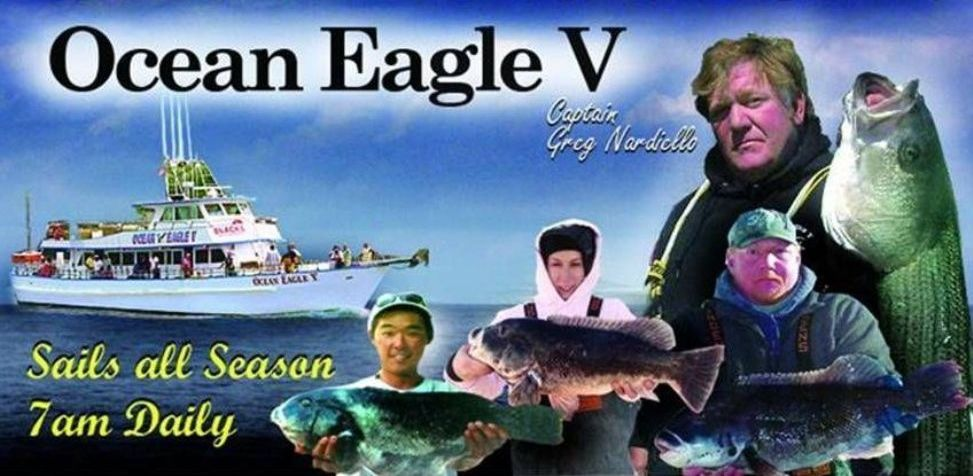 ocean-eagle-banner-WITH-GrEG-top-cropped