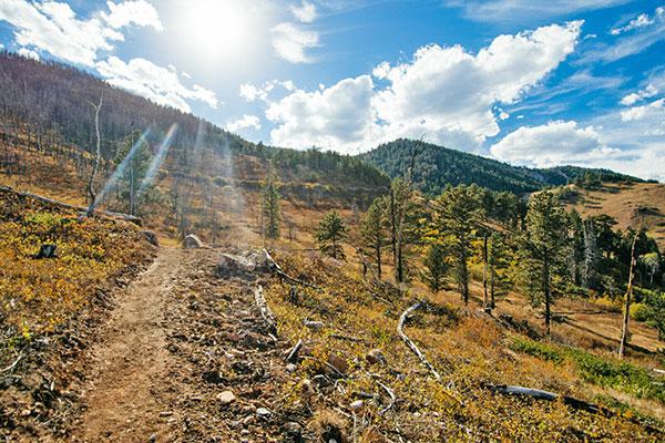 Trails & Recreation