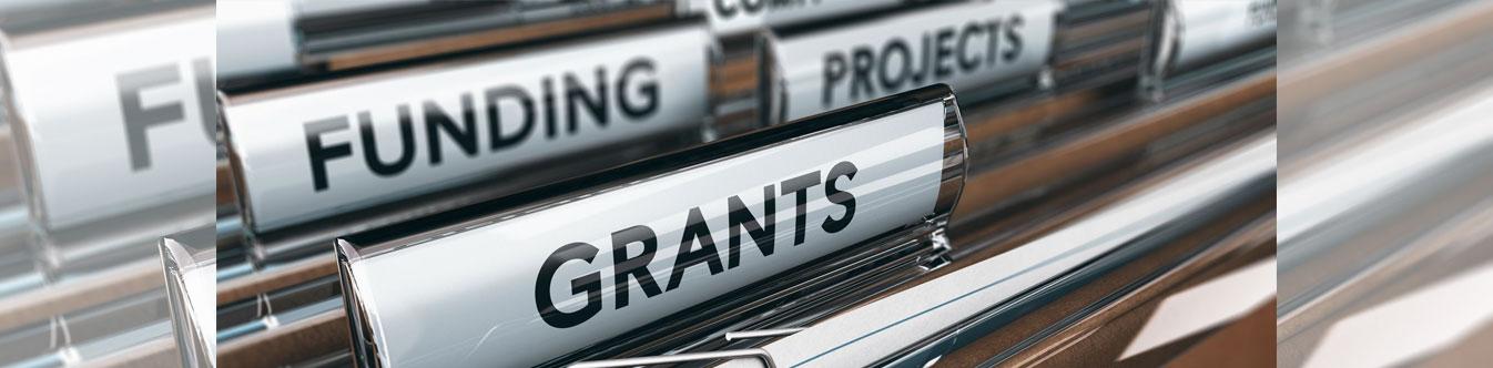 councillor grants
